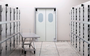 Медицинские двери в Саранске
